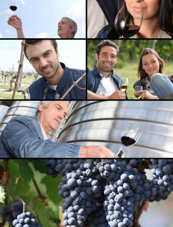 olfaction: Images of the wine industry Stock Photo