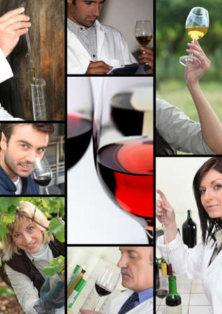 producers: oenologists and wine producers examining wine