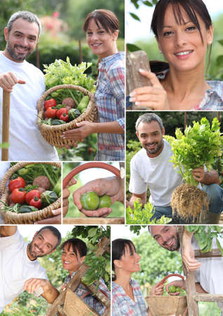 Montage of a couple picking produce photo