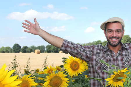 Farmer and sunflowers photo