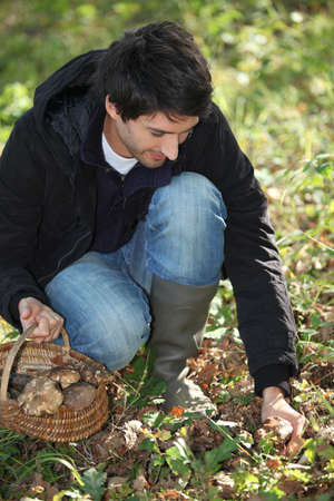 Man gathering mushrooms in basket Stock Photo - 14101545