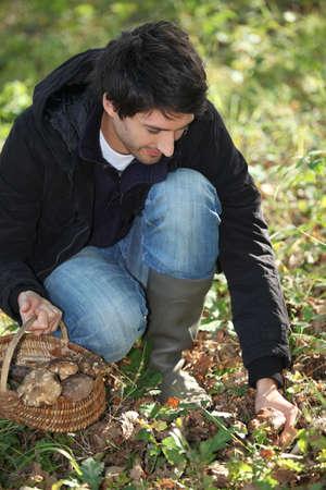 yellov: Man gathering mushrooms in basket Stock Photo