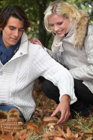 young couple picking mushrooms Stock Photo - 14111597