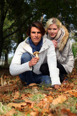 Couple picking mushrooms Stock Photo - 14111652