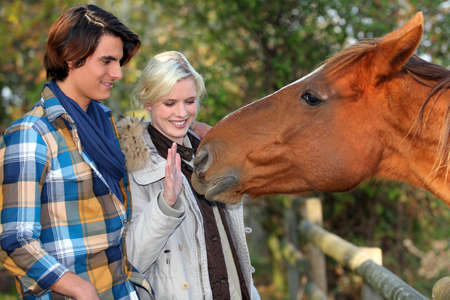 a couple and a horse asking for caress photo