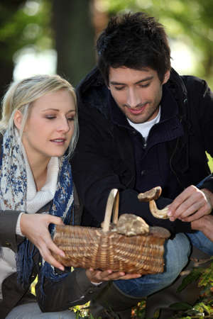 pasturage: 30 years old woman and man picking mushrooms Stock Photo