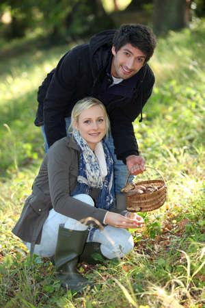 Couple picking mushrooms in the forest Stock Photo - 14104226