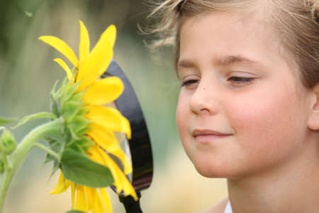 Child examining a sunflower with a magnifying glass Stock Photo - 14105371