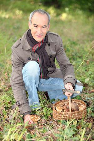 identifying: 65 years old man kneeling and picking mushrooms Stock Photo