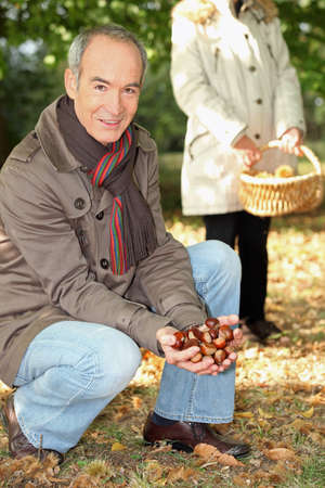 Middle-aged couple gathering chestnuts photo