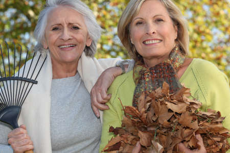 Two women raking leaves photo