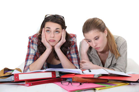 Two female friends revising together Stock Photo - 15175241