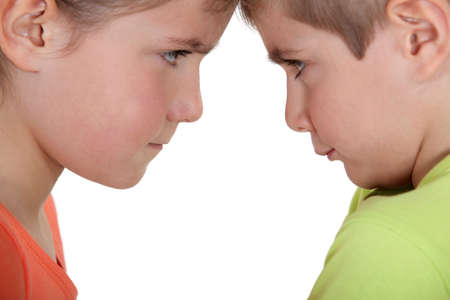 family fight: Sibling argument