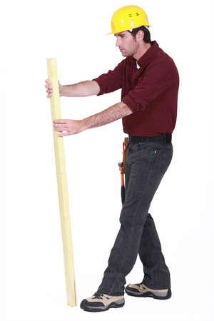 Carpenter inspecting plank of wood Stock Photo - 15263508
