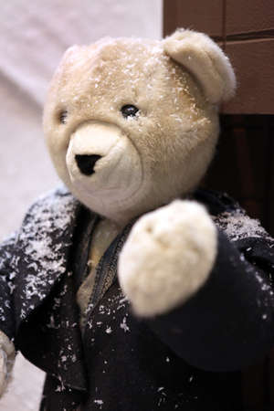 Teddy bear wearing jacket in the snow photo