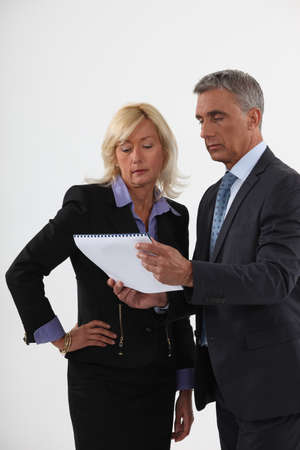 Business professionals looking at a notebook Stock Photo - 15625224