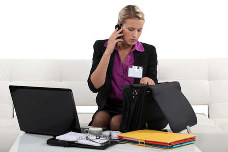 young female executive working from home Stock Photo - 15673957