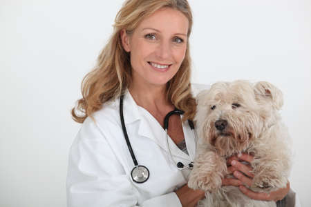 exotic pet: female veterinary and a dog