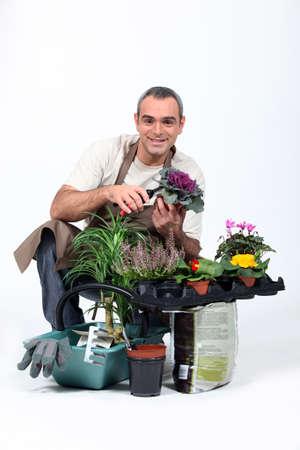 jardinero: Gardener se arrodilló junto a las plantas