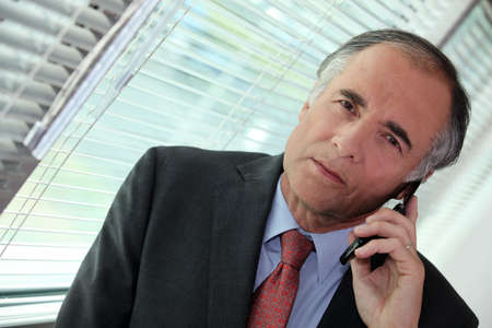 graying: Businessman talking on his mobile phone Stock Photo