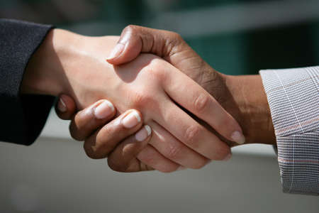 businessmen shaking hands: Handshake