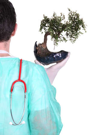 broken back: Surgeon with a bonsai tree Stock Photo