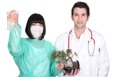 attaching: Medical team attaching a drip to a bonsai tree