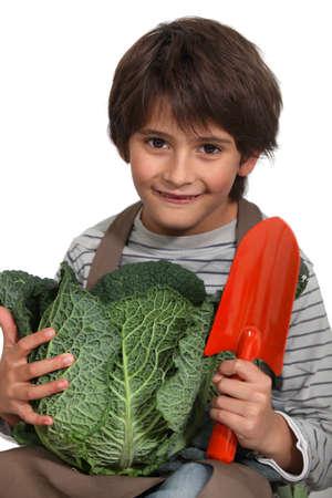 Little boy with cauliflower photo