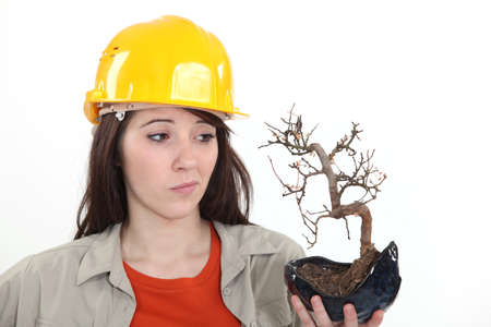 disconcert: A female construction worker holding a dead plant