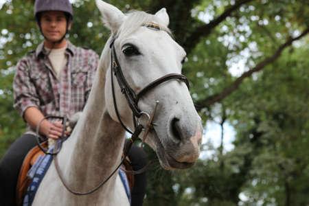 parapente: Un hombre en un caballo. Foto de archivo