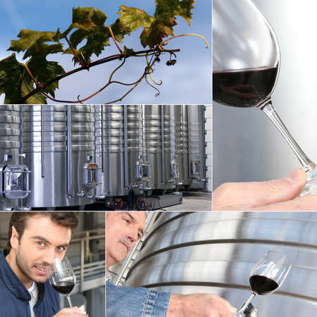 vats: Images of the wine industry Stock Photo