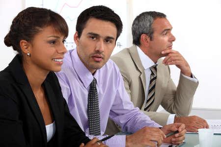 tertiary: board of directors