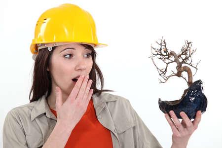 ecologist: Ecologist upset by burnt tree