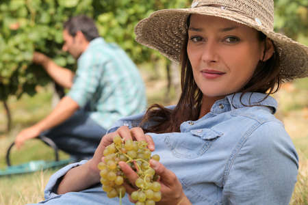 a woman wearing a straw hat is eating grapes behind a man harvesting grapes photo