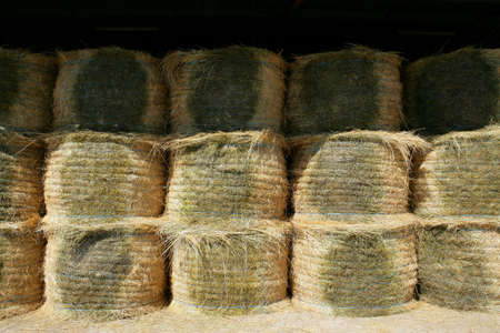 neatly stacked: Neatly stacked hay rolls