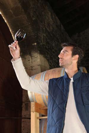 wine cellar: an oenologist examining red wine