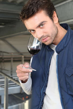 degustating: Man sampling wine production