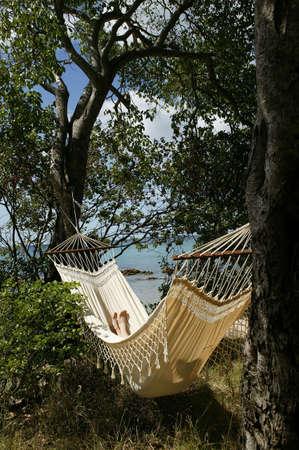 twiddle: Beach front hammock