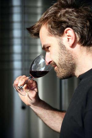 sensory perception: Wine connoisseur Stock Photo