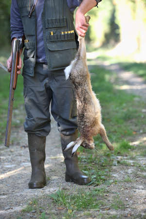 dead animal: Hunter holding dead rabbit