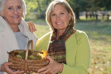 marron: Two elderly females gathering chestnuts