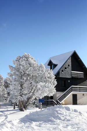 Picturesque snow covered house photo