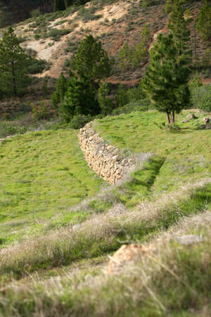 staggered: Staggered hillside