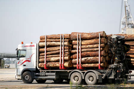 Truck transporting logs photo