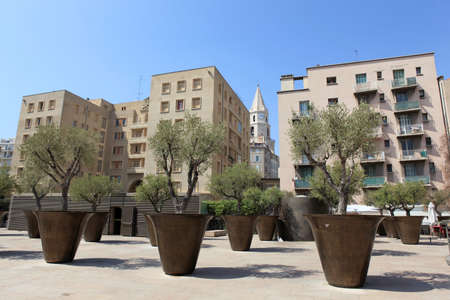 sky scrapers: Plants in a city square