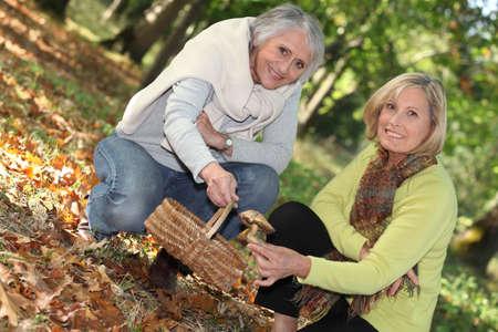 Two women gathering mushrooms Stock Photo - 24084020