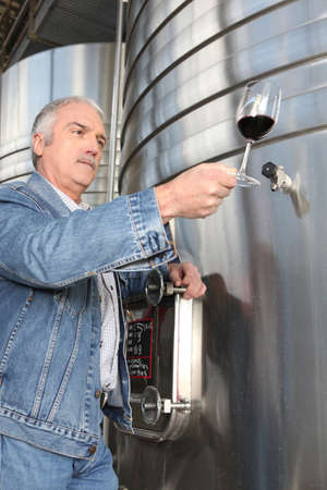 Man checking a glass of wine photo