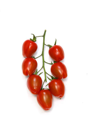 Vine tomatoes photo