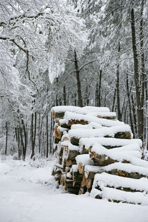 outdoor fireplace: Logs covered in snow