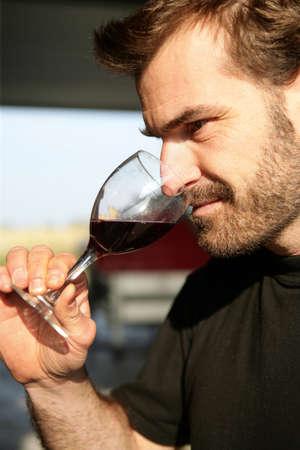 degustating: Wine connoisseur Stock Photo